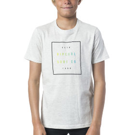 Футболка Rip Curl Logo Differents SS Tee (Optical White Marle)